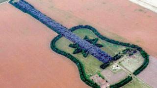 Una guitarra de cipreses y eucaliptos en plena pampa