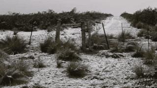 Nieve en Puelches